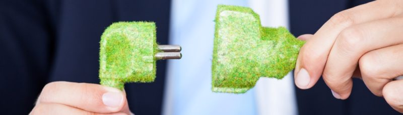 a business professional plugging in a moss covered power cord